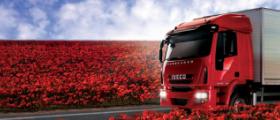 Ремонт грузовиков Iveco EuroCargo